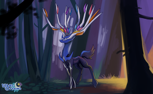 Xerneas by xWhiteDreamsx