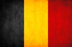 Belgium Grunge Flag by think0