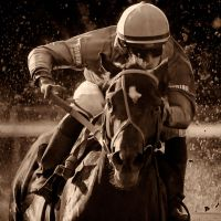 Horseracing -Turn by AndersStangl