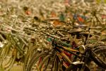 Bikes galore by TND-Photography