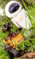 Wall-e and Eve in the rain. by lipeteixeira