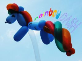 rainbow dash by in10cities