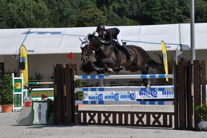 Show Jumping Stock 008 by Champi-Stock