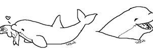 Orca Whale Makeables by Taikah
