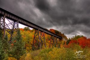 HDR Autumn Tracks 4 by Nebey