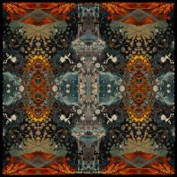 Ab09 Beauty of Symmetry 34 by Xantipa2