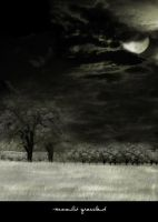 Moonlit Grassland by ruby-stocknstuff