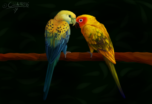 Lovebirds by Cicide76536