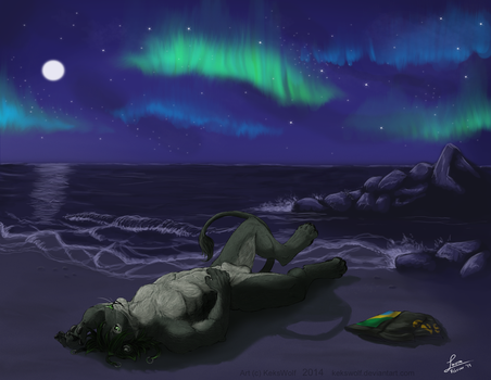 Northern Lights - Commission by KeksWolf