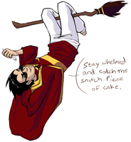Dick Grayson - Youngest Seeker in Hogwarts by LunarFireFox