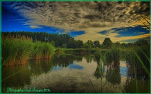 Hungarian landscapes.HDR-picture(photo series)24. by magyarilaszlo