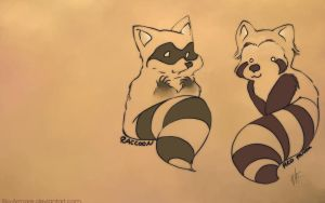 Red panda vs. Racoon by rio-armare
