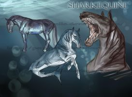 Sharkequine by Percyvelle
