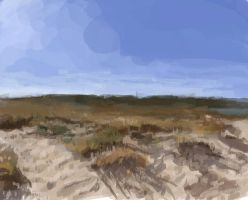 More Dunes! (Photo Reference) by parkurtommo