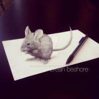 3D mouse by breaisbees