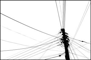 Lines by Wam