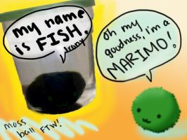 Marimo by FawkesFyre