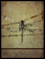 iPhoneography,  Dragon Fly by Gerald-Bostock