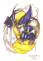Wolverine by RyouKugaInk