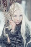 shaman I by LialiaD-stock