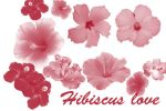 Hibiscus Love Brushset by Annmey