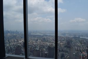 Top view of the Freedom Tower by annonmyous