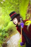 Willy Wonka III by blow-out-the-candles