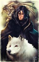 Jon Snow (if he was Rhaegar and Lyanna's Child) by TheAngryMammoth