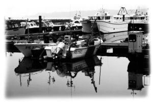 safe harbour by awjay