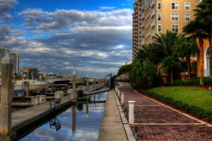 Tampa from Harbour Island by Dennis287