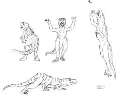 Raptor Sketches by Shachza