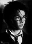 Harry Potter by Miss-Catherine