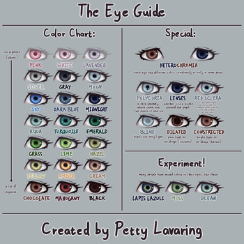 The Eye Guide by pettylavaring