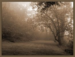 Forest Edge - Sepia Collection by cyeos