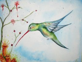 Hummingbird by yessica83