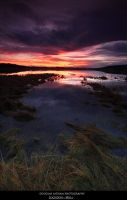 Lochdon - Mull. by DL-Photography