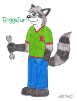 Riggsfur, the raccoon by AnthoFur