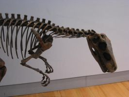 Dino Pic from the ROM 4 by Shasafiro