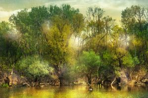 Gold river by Louisolah