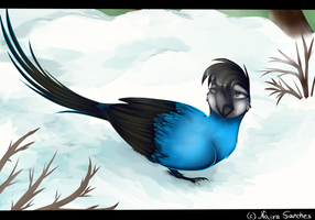 Snow and sadness by NairaSanches