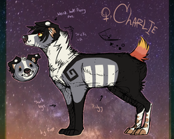 { Charlie Reference 3.0 } by solitaryVagrant