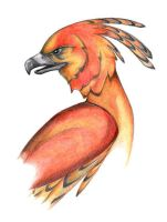 Fawkes by Naera