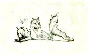 Wolves by Smilened