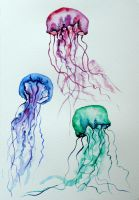 Jelly fish watercolor 2 by Lunicqa