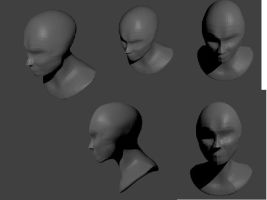 3D head wip by Jenniferard2050