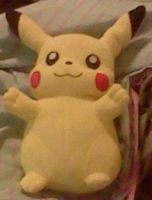 D'awww Look at my new Pikachu! by SNlCKERS