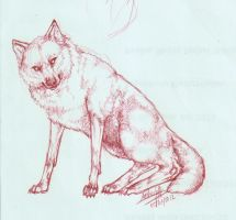 Redwolf by Hellas-Antares
