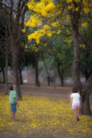 Waiting for the fall by EyeInFocus