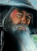 Gandalf The Grey by RandySiplon