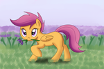 Scootaloo Flower For You! by MochaSketch